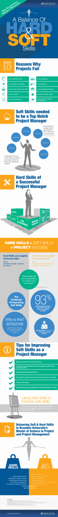 the-successful-project-manager-a-balance-of-hard--soft-skills_525db8df4ebd4